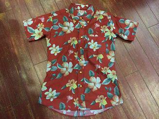 グリームの半袖シャツ!